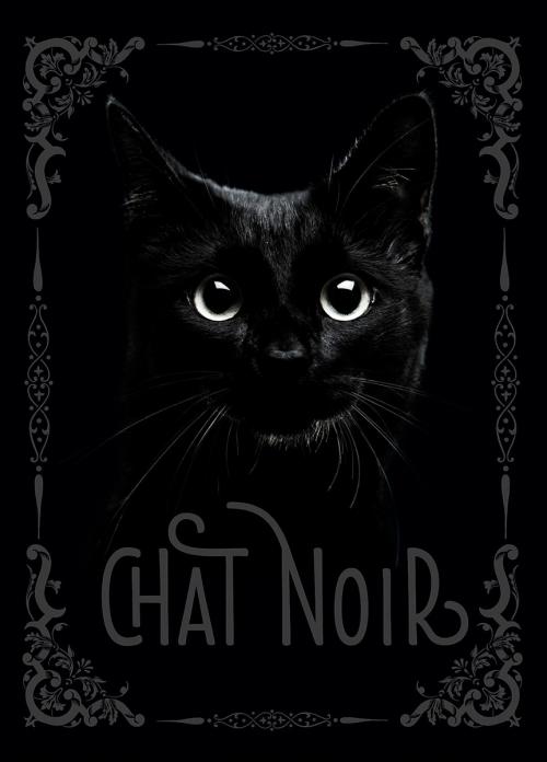 Couverture Chat noir