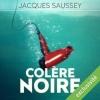 Couverture Colère Noire Editions Audible studios 2015