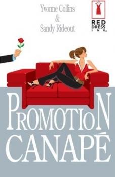 Couverture Promotion canapé