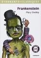 Couverture Frankenstein ou le Prométhée moderne, abrégé Editions Flammarion (GF - Etonnants classiques) 2012