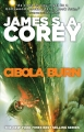 Couverture The expanse, tome 4 : Les feux de Cibola Editions Orbit Books 2015
