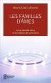 Couverture Les familles d'âmes Editions J'ai Lu (Aventure secrète) 2013
