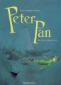 Couverture Peter Pan (roman) Editions Flammarion 2003