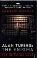Couverture Alan Turing ou l'énigme de l'intelligence Editions Vintage 2014