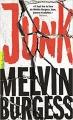 Couverture Junk Editions Gallimard  (Pôle fiction) 2017