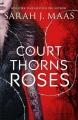 Couverture Un palais d'épines et de roses, tome 1 Editions Bloomsbury 2015