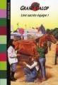 Couverture Une sacrée équipe ! Editions Bayard (Poche) 2008