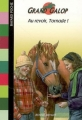 Couverture Au revoir, Tornade ! Editions Bayard (Poche) 2007