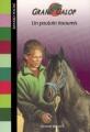Couverture Un poulain insoumis Editions Bayard (Poche) 2007