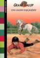 Couverture Une cousine trop parfaite Editions Bayard (Poche) 2009