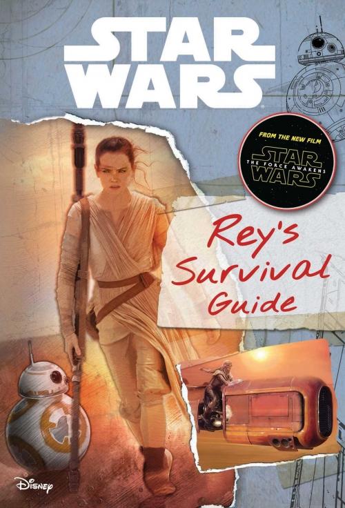 Couverture Rey's Survival Guide