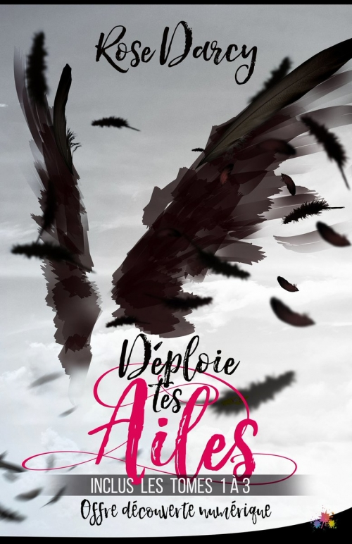 Couverture Déploie tes ailes, intégrale, tomes 1, 2 et 3