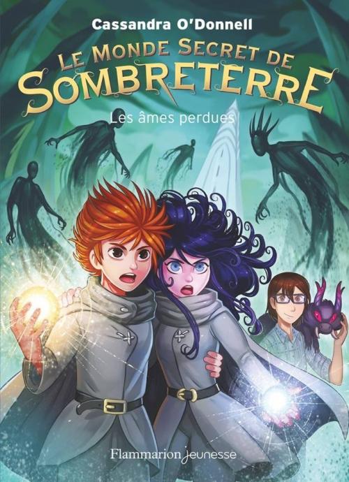 Couverture Le monde secret de Sombreterre, tome 3 : Les âmes perdues