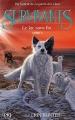 Couverture Survivants, cycle 1, tome 5 : Le lac sans fin Editions Pocket (Jeunesse) 2017