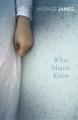 Couverture Ce que savait Maisie Editions Vintage (Classics) 2007