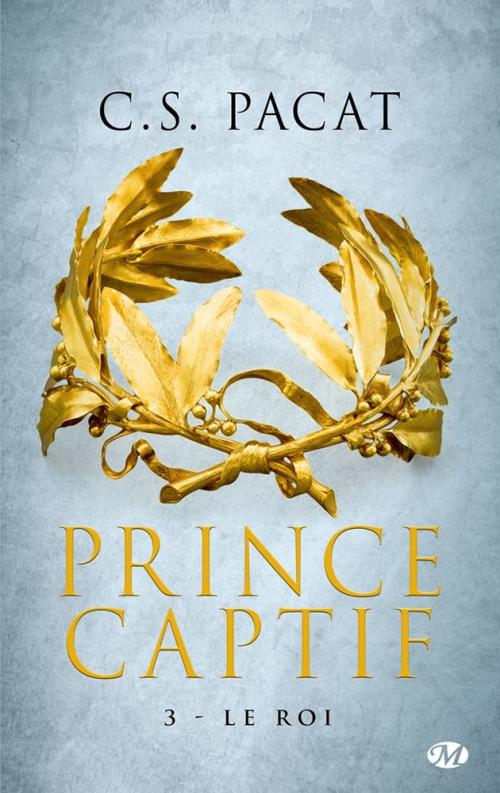 Couverture Prince captif, tome 3 : Le roi