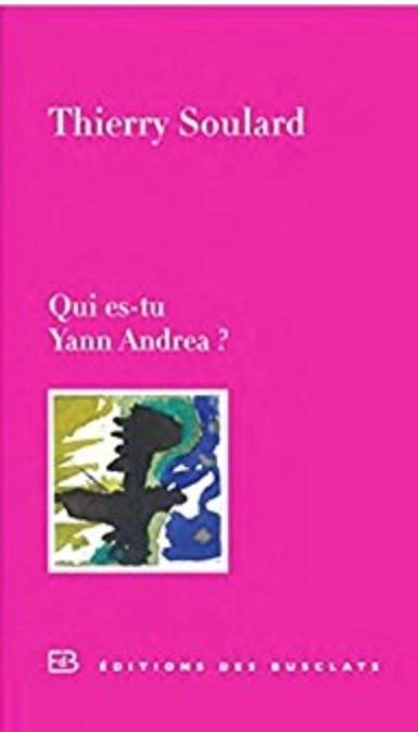 Couverture Qui es-tu Yann Andrea ?