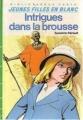 Couverture Intrigues dans la brousse Editions Hachette (Bibliothèque Verte) 1984