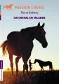 Couverture Un cheval en Irlande  Editions Flammarion (Jeunesse) 2013