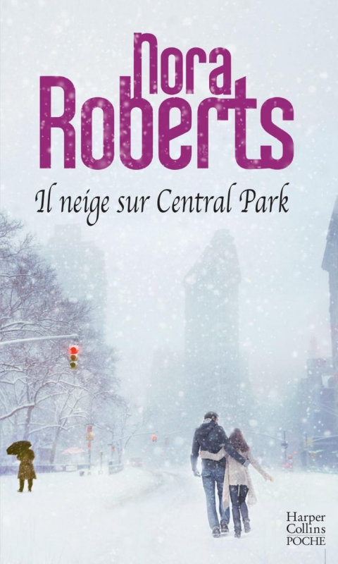 Couverture Il neige sur Central park