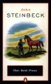 Couverture Le poney rouge Editions Penguin books 1992