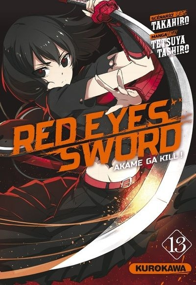 Couverture Red eyes sword, tome 13