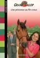 Couverture Une princesse au Pin Creux Editions Bayard (Poche) 2007
