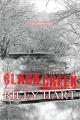 Couverture Blackcreek, tome 3.5 : Retour à Blackcreek Editions CreateSpace 2015