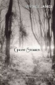 Couverture Ghost Stories Editions Vintage (Classics) 2011