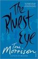 Couverture L'oeil le plus bleu Editions Vintage 2016