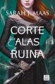 Couverture Un palais d'épines et de roses, tome 3 : Un palais de cendres et de ruines Editions Destino (Destinolibro) 2017