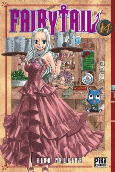 Couverture Fairy Tail, tome 14