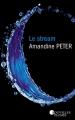 Couverture Le Stream, tome 1 Editions France Loisirs (Nouvelles Plumes) 2018