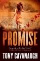 Couverture Darian Richards, tome 1 : La promesse Editions Hachette (Book Group) 2012