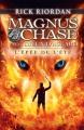 Couverture Magnus Chase et les Dieux d'Asgard, tome 1 : L'Épée de l'été Editions France Loisirs 2017