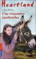 Couverture Heartland, tome 38 : Une rencontre inattendue Editions Pocket (Jeunesse) 2011