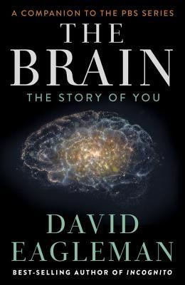 Couverture The Brain: The Story of You
