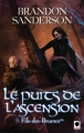 Couverture Fils-des-brumes, tome 2 : Le puits de l'ascension Editions Calmann-Lévy (Orbit) 2010
