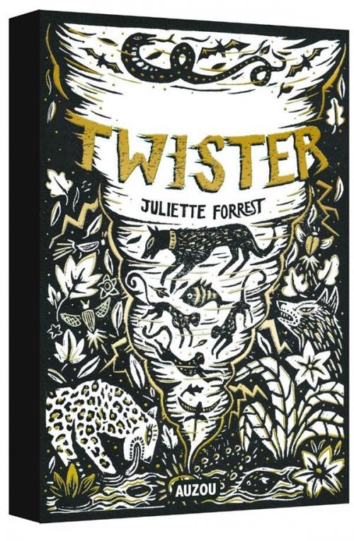 Couverture Twister