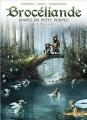Couverture Brocéliande : Forêt du petit peuple, tome 5 : Le miroir aux fées Editions Soleil (Celtic) 2018