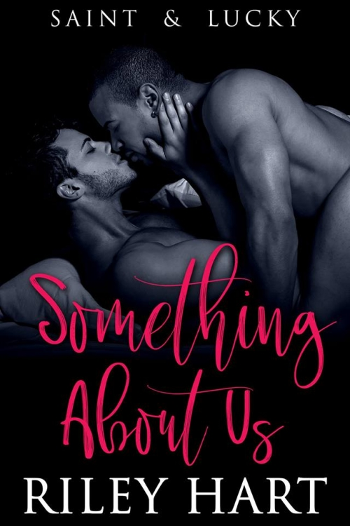 Couverture Something about Us