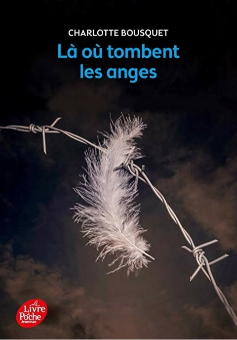 Couverture Là où tombent les anges