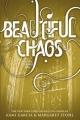 Couverture Chroniques des enchanteurs, tome 3 : 18 lunes Editions Little, Brown and Company 2013