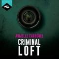 Couverture Criminal loft Editions Hardigan 2017