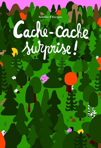 Couverture Cache-Cache surprise