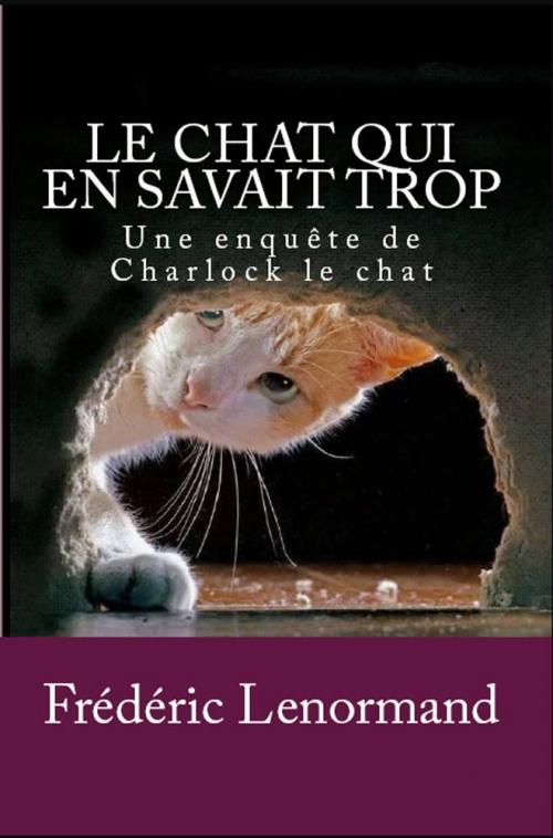 Couverture Charlock le chat, tome 1 : Le Chat qui en savait trop
