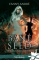 Couverture Bane Seed, tome 3 : Voyage Au Bout Du Sidh Editions Infinity (Urban fantasy) 2018