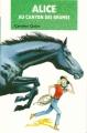 Couverture Alice au canyon des brumes Editions Hachette (Bibliothèque verte) 1995