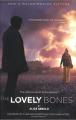 Couverture La nostalgie de l'ange Editions Little, Brown and Company 2002