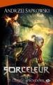 Couverture Sorceleur, tome 2 : L'épée de la providence Editions Milady 2012